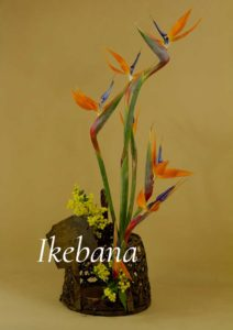 Ikebana blog